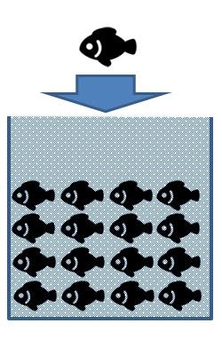 ブライン凍結税品製造の流れ図01