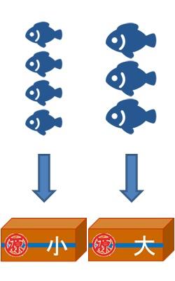ブライン凍結税品製造の流れ図03